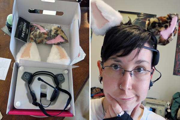 Headset with two sets of ears.
