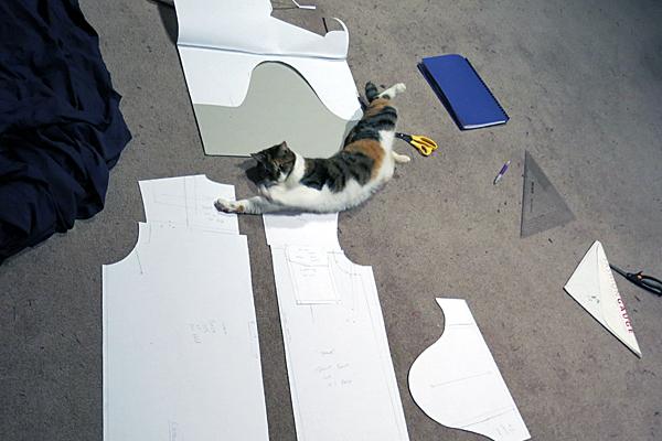 Helpercat doing what a Helpercat does best.